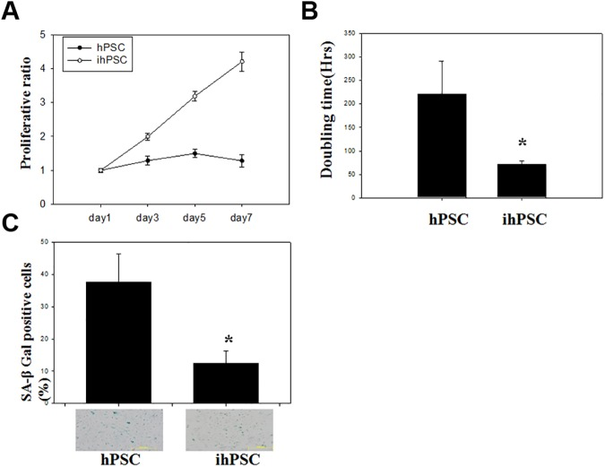 Cell growth and senescence of ihPSC. (A) A representative growth curve, (B) population doubling time (hrs), and (C) Senescence associated β-galactosidase (SA-β-gal) activity in ihPSC were compared to hPSC. Results are shown as the mean ±SD for three independent experimental cultures. * indicates a significant difference with P