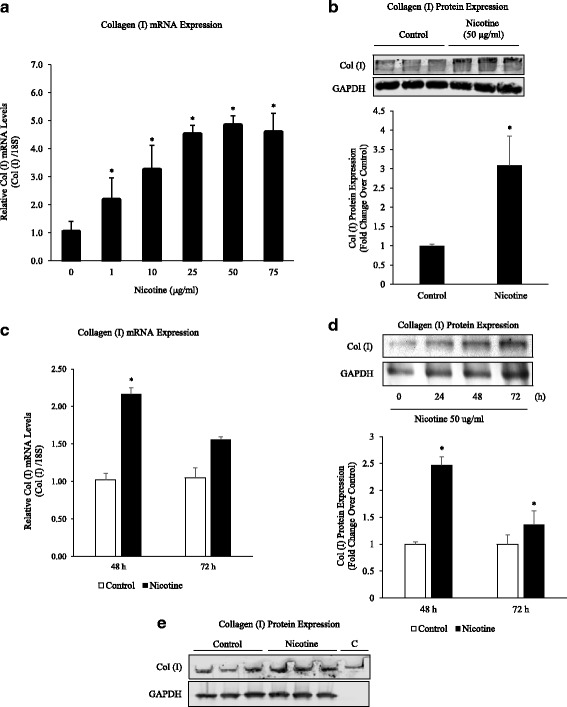 Nicotine Stimulates Collagen Type I mRNA and Protein Expression. a Primary lung fibroblasts (1 × 10 6 cells/6 well) were treated with nicotine (1–75 μg/ml) for 24 h. Real-time PCR reactions were performed using mouse collagen type I or 18S primers. Note that nicotine induced a dose-dependent increase in collagen type I mRNA expression. mRNA levels were normalized to 18S and collagen type I levels compared to untreated controls. b Nicotine-treated fibroblasts were subjected to Western blot analysis using anti-collagen type I antibody or GAPDH, followed by secondary goat anti-rabbit IgG (IRDye®). Protein bands were separated by native (collagen type 1) or SDS-PAGE (GAPDH) gel electrophoresis (8%) and quantified by densitometry. Collagen type I levels were elevated in the presence of nicotine (50 μg/ml). c Primary lung fibroblasts were treated with nicotine (50 μg/ml) for up to 72 h. Nicotine induced a significant increase in collagen type I mRNA levels at 48 h. d Fibroblasts were treated with nicotine (50 μg/ml) for up to 72 h. Protein bands were separated by SDS-PAGE gel electrophoresis (8%) and quantified by densitometry. Collagen type I protein was increased at 48 and 72 h by Western blot analysis. e Purified rat-tail collagen c was run with 72-h protein samples for antibody validation. Quantification of 1E included in 1D. All experiments repeated at least 3 times. Significance was assessed using p values
