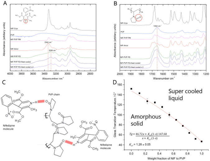 ( A ) FT-IR results show the N-H peak in pure amorphous nifedipine 3342 cm −1 shifts to 3288 cm −1 in FD formulations of nifedipine in PVP; thus indicating strong intermolecular hydrogen bonding between the N-H group of nifedipine and the carbonyl group in PVP 37 , 49 . (B) Showing the (C = O) carbonyl group of PVP maintained at 1654 cm −1 in pure PVP and FD formulations: indicating that the C = O peak of PVP was not greatly influenced by the hydrogen bonding between NIF and PVP 37 , 49 . FT-IR spectra presented in (A) and (B) were corrected for baseline using the software PerkinElmer spectrum 10. (C) A proposed model for the intermolecular hydrogen bonding between nifedipine and PVP based on the IR spectra. Hydrogen bonds are presented in red. This figure was constructed using ACD/ChemSketch. (D) Average T g of heat cycled samples of nifedipine in PVP. The data was fitted to Gordon Taylor equation, using OriginPro, where x is the weight fraction of nifedipine. Error bars represent standard error of n = 3.