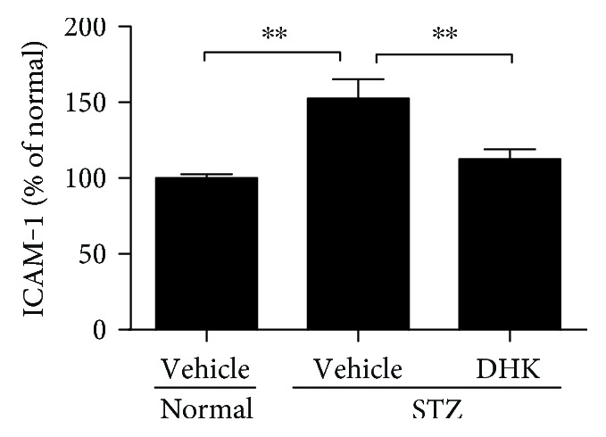 Effect of DHK on mRNA expression of ICAM-1 in the retinas. Seven days after injection of STZ, rats were orally administered for 16 weeks. At the end of the experiment, rats were sacrificed and the left retinas were then collected. Retinal total RNA was extracted from the retina using TRIzol reagent. Retinal mRNA expression of ICAM-1 was evaluated using real-time PCR method. Results were expressed as percentage relative to the normal group. Values were expressed as mean ± SEM, n = 8–10, and ∗∗ P
