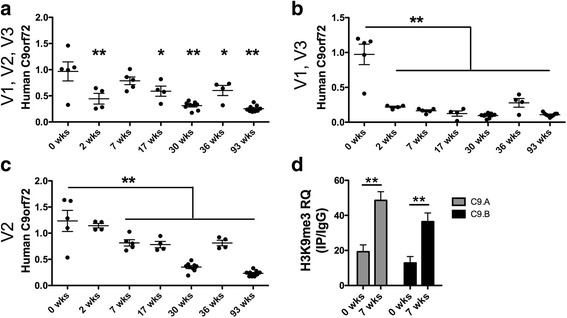 C9ORF72 transcription decreases while a repressive histone methylation mark increases in the brain of C9-BAC mice during the first post-natal weeks. Values of human C9ORF72 in the BAC mouse cortex, normalized to the average of GAPDH and 18S, are shown for primers amplifying transcript variants V1, V2, V3 ( a ); V1, V3 ( b ) and V2 ( c ). Age groups are indicated on the x-axis in weeks (wks). Mean and standard error of the mean (SEM) are indicated by long and short bars respectively. For each primer set, a one-way analysis of variance was performed ( p