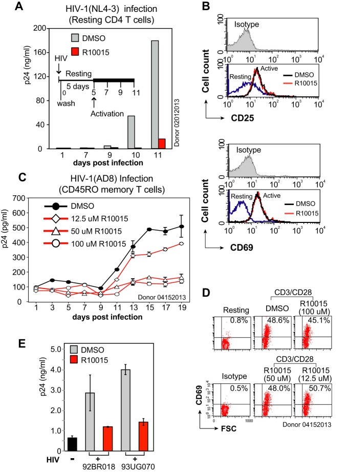 R10015 inhibits R5 and X4 <t>HIV-1</t> latent infection of resting CD4 T cells and primary isolate infection of <t>PBMC.</t> (A) R10015 inhibits HIV latent infection of resting CD4 + T cells. Cells were treated with R10015 (100 μM) or DMSO for 1 h and infected with HIV-1(NL4-3) for 2 h. The virus and the drug were washed away, and the cells were cultured for 5 days in the absence of R10015 and then activated with CD3/CD28 beads. Viral p24 release was measured. (B) CD25 and CD69 surface staining demonstrates that R10015 did not inhibit T cell activation with this short period of drug treatment. (C) R10015 inhibits R5 HIV-1 latent infection of CD45RO + memory CD4 T cells. Resting memory CD4 T cells were similarly treated with R10015, infected with HIV-1(AD8), washed, incubated for 5 days without stimulation, and then activated with CD3/CD28 beads. (D) CD69 surface staining was performed for control of R10015 effects on T cell activation. (E) R10015 inhibits HIV-1 primary isolate infection of PBMC. PBMC were cultured for 1 day and then treated with 100 μM R10015 for 1 h. The cells were infected with HIV 92/BR/018 (Brazil) or HIV 93UG070 (Uganda) for 3 h, washed to remove the viruses and R10015, and cultured for 3 days. The supernatant was analyzed for HIV-1 p24 by ELISA. DMSO was used as a control. The error bars indicate standard deviations.