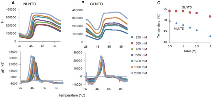 Thermal stability of CA NTD proteins at various NaCl concentrations. The thermal stability of NLCA and GLCA NTD proteins at various NaCl concentrations was evaluated as described in the legend to Figure 6 . FI values and melt curves ( A,B , respectively), and Tm shifts induced by NaCl (C) are shown.