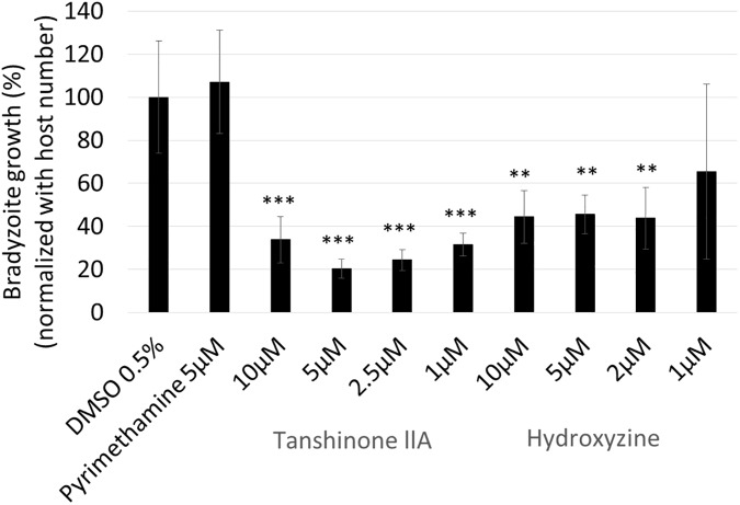 Tanshinone IIA and hydroxyzine reduced the number of in vitro- differentiated bradyzoites. PLK_DLUC_1C9 T . gondii were inoculated onto a monolayer of HFF cells and incubated for 2 h before undergoing bradyzoite induction for 3 days. After bradyzoite induction, compounds, as indicated, were added to the medium and infected host cells were incubated for 2 days under bradyzoite culture conditions. Firefly luciferase activity, under the control of the bradyzoite-specific BAG1 promoter, was measured and normalized to non-treated control (DMSO) wells. Bradyzoite growth rate was normalized with host cell number. Means ± SD from triplicate wells are shown. The statistical difference between the DMSO control and each compound was evaluated by using Dunnett's test. ** p