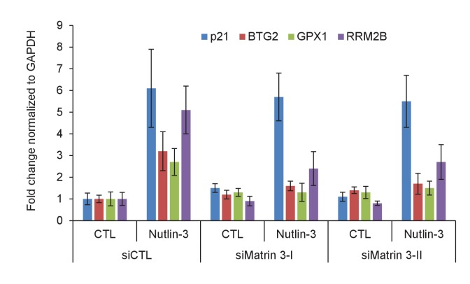 Matrin 3 regulates the induction of PINCR targets upon p53 activation by Nutlin-3. PINCR -WT HCT116 cells were reverse transfected with CTL siRNA or Matrin-3 siRNAs for 48 hr and then treated with Nutlin-3 for 24 hr. The expression of PINCR targets and the negative control p21 , was assessed by qRT-PCR. Error bars represent SD from two independent experiments. DOI: http://dx.doi.org/10.7554/eLife.23244.043