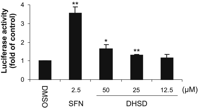 Effect of 2,3-dehydrosilydianin (DHSD) on ARE-driven gene expression in AREc32 reporter cells. Cells were treated for 24 h with 0.1% DMSO (control), 2.5 μM sulforaphane (SFN; positive control) or with 12.5–50 μM DHSD. After treatment, luciferase reporter activity was determined luminometrically and normalized to protein content. Data are means ± standard deviation of three experiments. * p