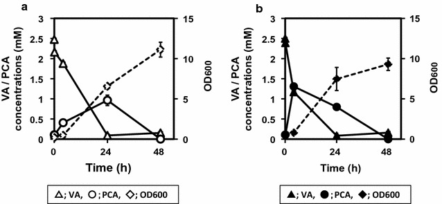 Biotransformation of VA to PCA by C. glutamicum expressing vanillate O -demethylase (Van). a C. glutamicum strain F ( open symbols ) as a control and b strain FVan ( closed symbols ) were cultured in BHI medium at 30 °C for 24 h, and 0.5 mL of each culture was transferred to 25 mL of AR medium containing 2.5 mM VA. The bioconversion was performed at 30 °C for 48 h with agitation at 180 rpm. Extracellular VA ( triangles ) and PCA ( circles ) were analyzed every 24 h. OD 600 ( diamonds ) was monitored simultaneously. Data represent the mean and standard error of three independent experiments