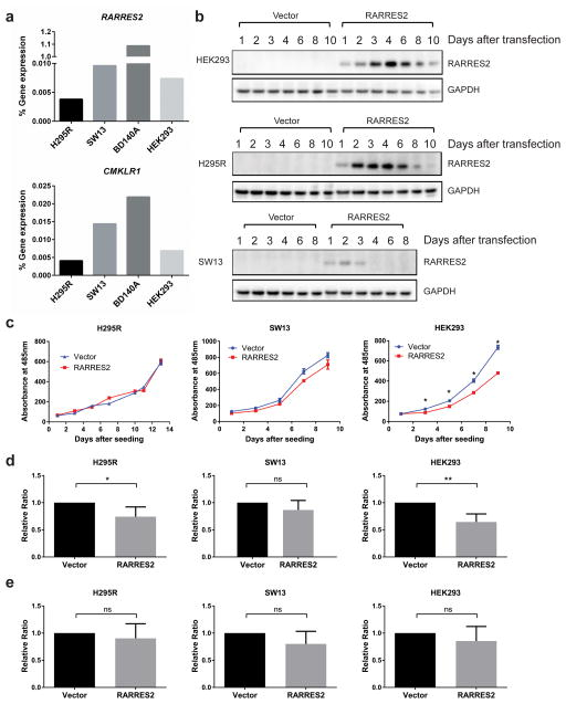 Transient RARRES2 overexpression inhibits cell proliferation in HEK293 cells and leads to reduced cellular invasion in H295R and HEK293 cells. ( a ) Baseline RARRES2 and CMKLR1 gene expression levels were barely detectable in the cell lines tested using TaqMan qPCR. ( b ) The time course for RARRES2 expression after transient transfection in HEK293, H295R and SW13 cell lines. ( c ) in vitro cell proliferation curve for cell lines transiently transfected with a vector control or RARRES2. Transient overexpression of RARRES2 inhibited cell proliferation in HEK293 cells, but not in H295R or SW13 cells. Data were presented as mean ± SEM. *, P