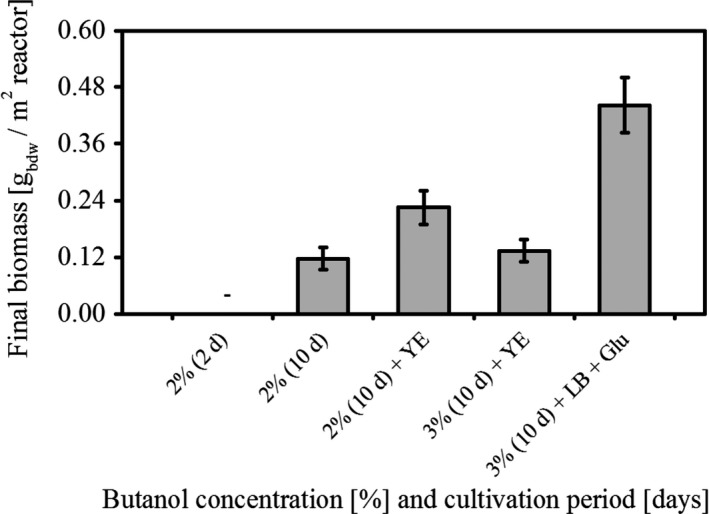 Medium dependent biofilm growth of P. taiwanensis VLB 120∆C at increasing butanol concentrations. Data presented here are mean values from three different experiments.