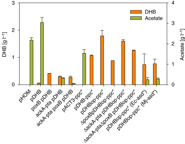 Production of 2,4-dihydroxybutyrate by engineered E. coli strains. Cells were cultivated in shake flasks on mineral medium containing 20 g per l glucose. Values correspond to concentrations after 24 h of cultivation. Error bars represent STDV from at least two replicate experiments. All strains were derived from E. coli K-12 substr. MG1655. All plasmids were derived from the pACT3 medium-copy number plasmid. pHOM expresses the genes encoding the homoserine pathway enzymes AK: Ec-LysC E250K, ASD: Ec-Asd, HSD: Sc-Hom6. pDHB expresses the genes encoding the DHB pathway enzymes MK: Ec-LysC V115A:E119S:E250K:E434V, MSD: Bs-Asd E218Q, MSR: Ms-Ssr H39R:N43H. pDHB-ppc* additionally expresses the malate-insensitive PEP carboxylase mutant Ppc K620S . pDHBopt-ppc* has optimized ribosome binding sites in front of each DHB pathway gene. pDHBopt-ppc*(Ec-asd*) and pDHBopt-ppc*(Mj-asd*) express, respectively, the Ec-Asd E241Q or Mj-Asd E210Q mutant enzymes instead of Bs-Asd E218Q .