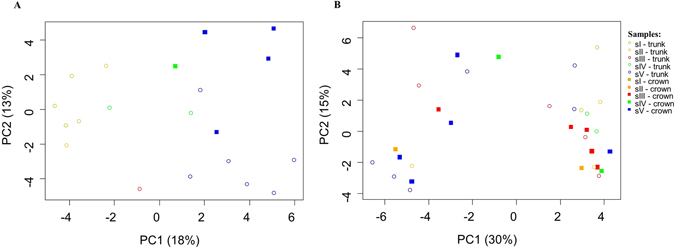 Principal component analysis (PCA) of DGGE fingerprinting of endophytic, wood colonizing bacterial communities from all pine wood tree samples from the two sampling sites obtained after PCR amplification of 16S rRNA gene fragments. The samples grouped according to the different symptomatic physiological classes in Malhada site ( A ); no clear clustering was observed in Avô site ( B ).