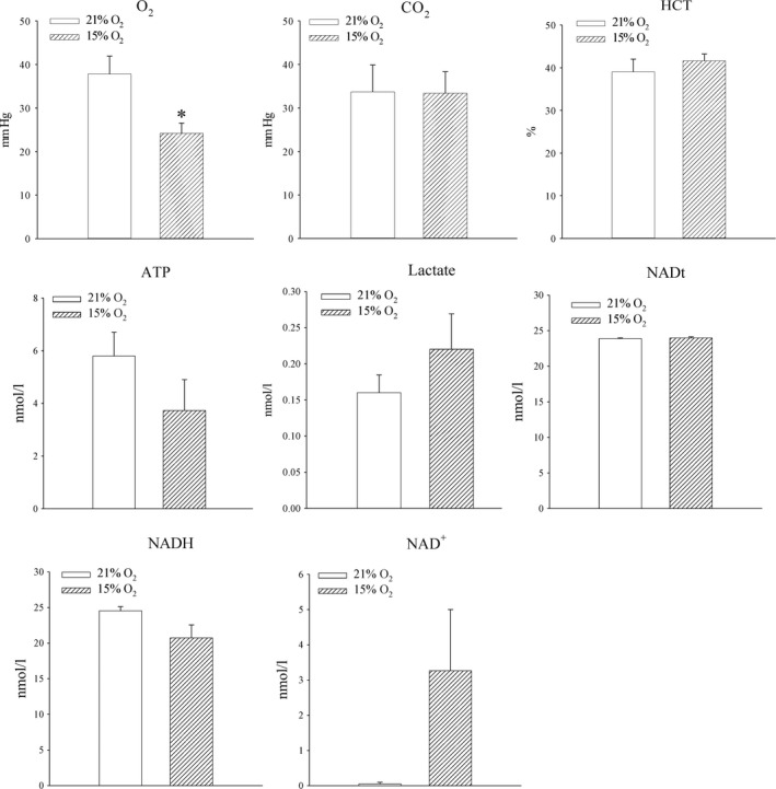 The effect of systemic exposure to 15% oxygen on different parameters in blood and myocardial tissue. Bar graphs depicting PO 2 (O 2 ), PCO 2 (CO2) and haematocrit (HCT) in the blood as well as ATP (ATP), lactate (Lactate), total NAD (NADt), NADH (NADH) and NAD+ (NAD+) in the myocardial tissue. Each bar is a mean ± S.E.M. ( n = 3–5). * P