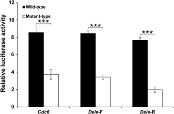 Reporter assay for evaluation of the promoter activities of Cdc6 , Dele -F, and Dele -R G4 DNAs. The G4-forming sequences were cloned into the pGL4.10 vector not containing any promoter. Black bars represent the wild-types and white bars represent the mutant-types. Luciferase activities relative to the pGL4.10 vector are shown (mean ± SD, n = 3). Wild- and mutant-types samples t-test differences: ***P