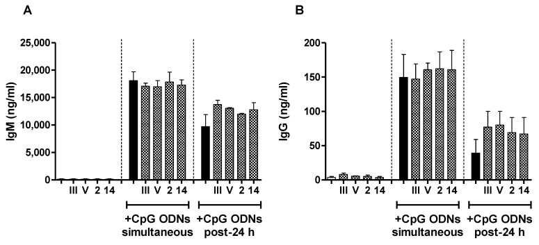 In vitro immunomodulatory effect of purified native S. suis serotype 2, S. suis serotype 14, GBS serotype III or GBS serotype V CPS on the Ig secretion by naive B cells induced by CpG ODNs. Mouse splenic B cells (10 6 cells/mL) were incubated with purified native S. suis serotype 2, S. suis serotype 14, GBS serotype III or GBS serotype V CPS (each at 20 µg/mL) simultaneously with (central panel) or 24 h before the addition of (right panel) CpG ODNs (1 µg/mL). After seven days of incubation, supernatants were collected and total IgM ( A ) and IgG ( B ) were quantified by ELISA. Cells stimulated with CpG ODNs alone (black bars) served as the positive control. In the left panel, cells stimulated with medium (white bars) or each purified CPS alone are represented as an indication of the basal Ig secretion level of cells in absence of stimulation by CpG ODNs. Data are expressed as arithmetic means with the SEM of three (central and right panels) or four (left panel) experiments.