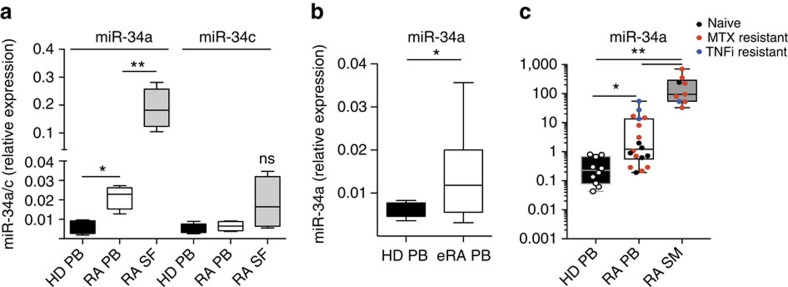 MiR-34a expression is upregulated in DCs from patients with RA. ( a ) CD1c + DCs were FACS-sorted from PB of healthy donors (HD, n =6), and from PB ( n =6) and SF ( n =6) of RA patients with established RA of > 2 years duration. Compared to HD, miR-34a expression was upregulated in PB CD1c + in RA patients (* P