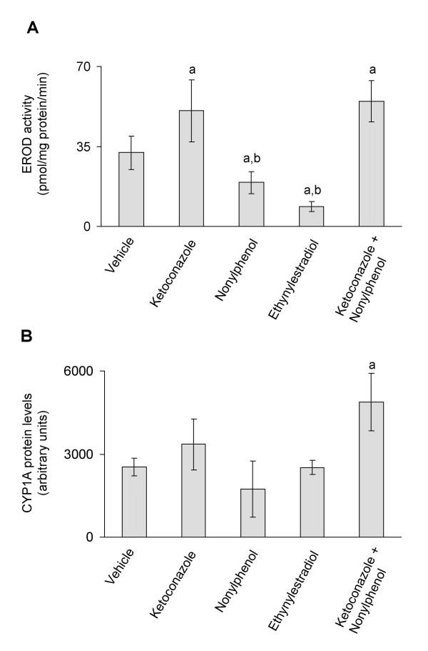 A) In vivo CYP1A enzyme activities (A) and in vivo CYP1A protein expression (B) . CYP1A enzyme activities and protein expression in juvenile Atlantic cod exposed in vivo to vehicle (5 ml peanut oil/kg fish), ketoconazole (12 mg/kg fish), nonylphenol (25 mg/kg fish), ethynylestradiol (5 mg/kg fish) and ketoconazole + nonylphenol (12 + 25 mg/kg fish). A) EROD activities. B) CYP1A protein levels analyzed using PAb against rainbow trout CYP1A. Each bar represents mean values of eight to nine fish ± SD; a Significantly different from vehicle treated fish; b Significantly different from ketoconazole+nonylphenol treated fish; P