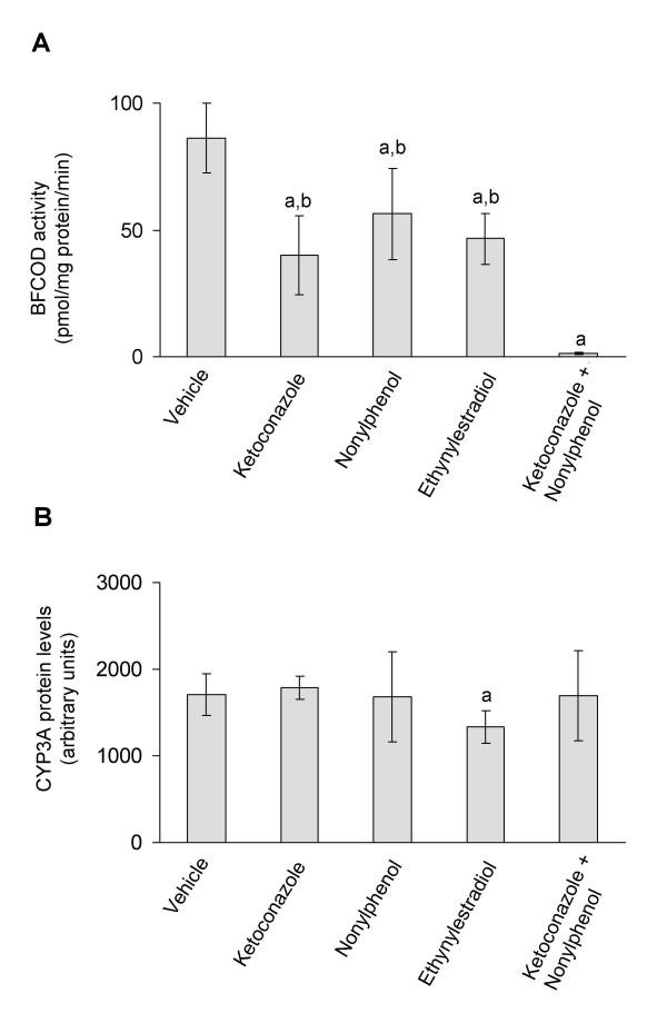 In vivo CYP3A enzyme activities (A) and in vivo CYP3A protein expression (B) . CYP3A enzyme activities and protein expression in juvenile Atlantic cod exposed in vivo to vehicle (5 ml peanut oil/kg fish), <t>ketoconazole</t> (12 mg/kg fish), nonylphenol (25 mg/kg fish), ethynylestradiol (5 mg/kg fish) and ketoconazole + nonylphenol (12 + 25 mg/kg fish). A) BFCOD activities. B) CYP3A protein levels analyzed using PAb against rainbow trout CYP3A. Each bar represents mean values of eight to nine fish ± SD; a Significantly different from vehicle treated fish; b Significantly different from ketoconazole+nonylphenol treated fish; P