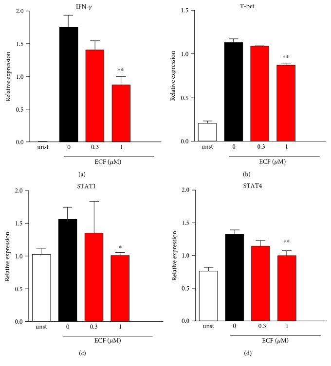 ECF suppresses IFN- γ -related pathway in TCR engagement-mediated T lymphocyte activation. Purified CD4 + T cells were stimulated with anti-CD3 (5 μ g/ml) and anti-CD28 (2 μ g/ml) for 16 h. Total RNA was isolated using RNeasy kits, and 1 μ g of total RNA was used to synthesis cDNA. Real-time quantitative PCR assay was carried out using SYBR Premix Ex Taq II kit, and relative quantification of mRNA expression was calculated as the fold increase using the delta-delta Ct; the housekeeping gene is β -actin. Results presented are mean ± s.e.m., n = 3. ∗ P