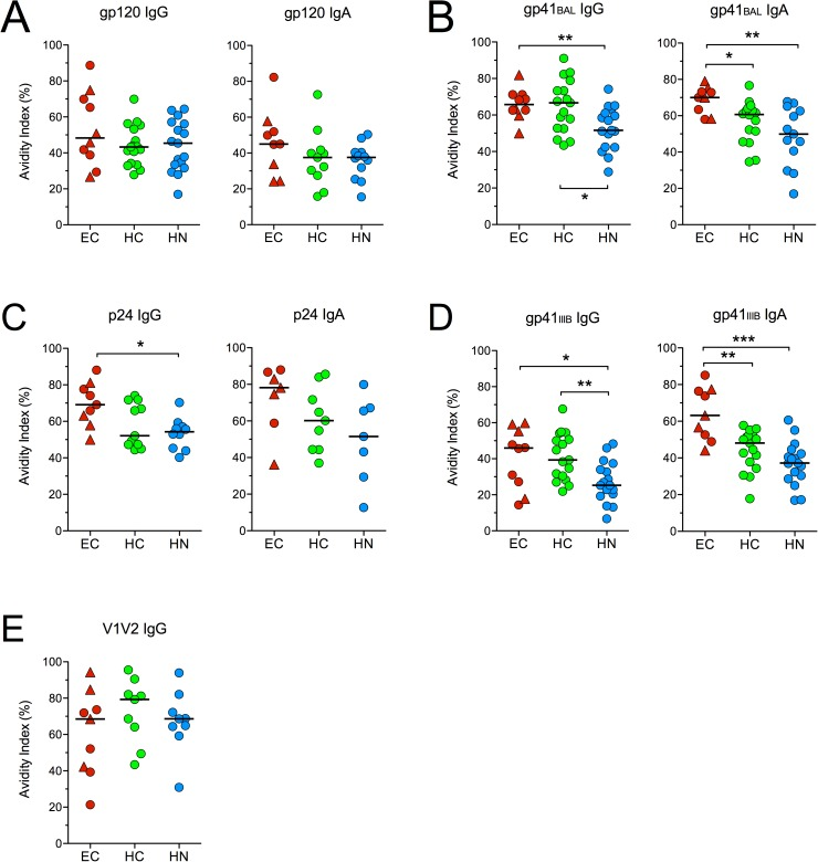 Avidity of HIV-specific IgG and IgA antibodies. The average avidity of serum IgG and IgA antibodies to (A) gp120 consensus B , (B) 293T-derived gp41 BAL , (C) p24, (D) E . coli -derived gp41 IIIB and (E) gp70-V1V2 Case A2 at T1 and T2 is shown for subjects that had levels of binding antibodies that produced absorbance values > 0.5 at a 1/50 (for IgA) or 1/100 (for IgG) dilution. Bars represent medians. *p