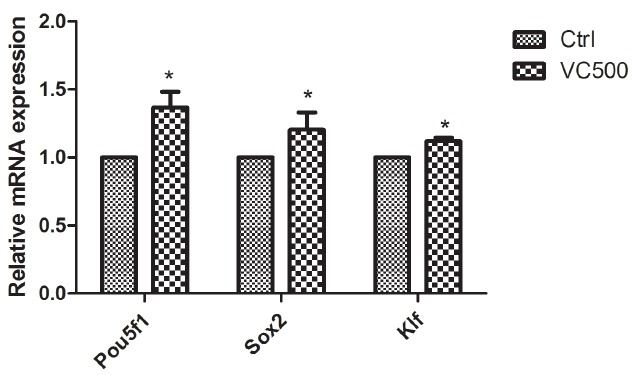 Expression of genes related to reprogramming in porcine blastocysts cultured for 7 days. mRNA was extracted from blastocysts cultured in the absence or presence of 500 ng/mL ascorbic acid. Gene expression was analysed by real-time reverse transcription-polymerase chain reaction. Black bar: control group, white bar: ascorbic acid group. Values are the mean±standard error of the mean of three independent experiments. VC, ascorbic acid, Asterisks (*) indicate p