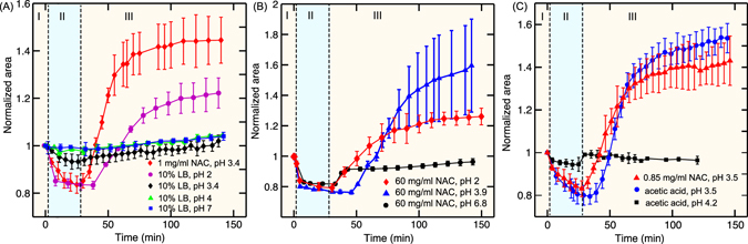 ( A ) Comparison of the effect of HCl and NAC on the killing of biofilm bacteria. The black and red curve compare the behavior of 1 mg/ml NAC (pH 3.4) and 10% LB with pH adjusted to 3.4 using HCl. No swelling at pH 3.4 without NAC indicates no killing of bacteria (confirmed with dead cell staining). ( B ) Effect of NAC with pH adjusted using sodium hydroxide on the killing of biofilm bacteria. The red curve shows the action of 60 mg/ml NAC in 10% LB. The blue and the black curves shows the effect of 60 mg/ml NAC with pH adjusted to 3.9 and 6.8 respectively. ( C ) Comparison of the effect of acetic acid and NAC on the killing of biofilm bacteria. Acetic acid and NAC at pH 3.5 lead to the swelling of the microcolonies. Acetic acid at pH 4.2 and above did not significantly affect the microcolonies.