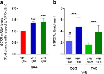 Activation of the enhancer by CRISPR-dCas9-VPR induces GCKR expression. HepG2 cells were co-transfected with the VPR activator plasmid and the guide RNA plasmids targeting ( gR1 or gR2 ) or not targeting ( gEm ) the enhancer locus. a Total GCKR mRNA levels determined by qPCR with a GCKR Taqman gene expression assay. The data represent GCKR mRNA levels relative to non-targeting VPR + gEm, normalized to housekeeping gene RPLP0. Error bars represent standard deviation of four independent experiments (n = 4) with three, four, four, and three technical replicates, respectively. b Haplotype-specific enrichment of H3K27Ac (enrichment over input normalized to a region of GRB10 with no TF binding or active histone marks [rs6943153]) determined by ChIP-qPCR using the custom Taqman SNP Genotyping Assay for rs780094 (three independent experiments with three, two, and three technical replicates, respectively). Error bars represent the standard deviation between technical replicates (n = 8). Asterisks and the hash symbol depict statistical significance (*** p ≤ 0.005; # p ≤ 0.5 and refers to comparison between haplotypes upon VPR + gEm; a one-way ANOVA with Tukey's post-hoc test; b two-tailed t -test for comparisons between two groups)