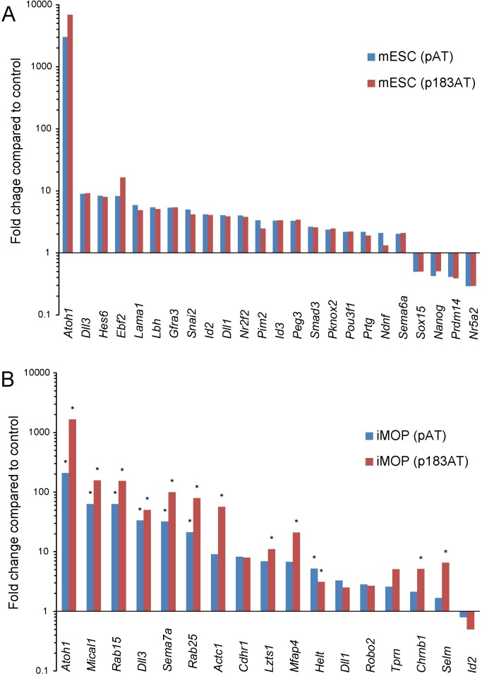 <t>qRT-PCR</t> validation of a subset of differentially expressed genes in mESC and iMOP cells. Graphs show linear fold change of differentially expressed genes by <t>Taqman</t> qPCR detection in Atoh1-expressing cells (blue) and Atoh1/miR-183 family-expressing cells (red) compared to control in mESCs (A) and iMOP cells (B). Data were normalized to detection of 18S ribosomal RNA. All values represent statistically significant differences for mESCs except for Ndnf expression in Atoh1/miR-183 family-expressing cells, and statistically significant differences are indicated by asterisks for iMOP cells (n = 3, Student's t-test p
