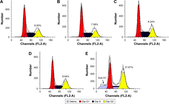 Flow cytometric analysis of cell-cycle arrest in PC-3 cells after the treatment with different nanocomplexes for 24 h: ( A ) control, ( B ) siRNA, ( C ) DOX-Duplex, ( D ) PEI25K/siRNA and ( E ) PEI/DOX-Duplex/siRNA. Abbreviations: DOX, doxorubicin; PEI, polyethylenimine.