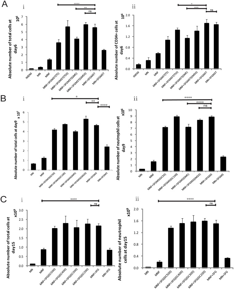 Optimization of culture conditions for ex vivo expansion of human neutrophils from human UCB CD34 + cells. (A) Absolute cell numbers were calculated on a particular day (e.g., 5×10 4 CD34 + cells seeded on day 0). In Stage 1, isolated CD34 + cells were cultured for six days in various medium formulas ( Table 1 ), absolute numbers of the total cell [A(i)] and CD34 + cell [A(ii)] were calculated on day 6. (B) Stage 2 started with the cells derived from group MNF+SFGM3T (IMDM +Nutrition Supplements + 100ng/ml SCF + 100 ng/ml Flt-3L + 50ng/ml G-CSF + 20ng/ml TPO + 25ng/ml IL-3 +15ng/mL GM-CSF) of Stage 1. Absolute numbers of total cells [B(i)], CD66b + cell [B(ii)] were calculated on day 9 with G-CSF ranging from 50 to 100 ng/ml and GM-CSF ranging from 5 to 20 ng/ml in MNF+SFGM3 medium (IMDM + nutrition supplements + FBS + 100 ng/ml SCF + 100 ng/ml Flt-3L + 75 ng/ml G-CSF + 15 ng/ml IL-3 + 10 ng/ml GM-CSF). (C) Stage 3 started with the cells derived from group MNF+SFGM3 of Stage 2. Absolute numbers of total cell [C(i)], CD66b + cell [C(ii)] and were calculated on day 15 in different medium formulas with G-CSF ranging from 100 to 500 ng/ml in MNF+SFG (IMDM + nutrition supplements + FBS + 100 ng/ml SCF + 100 ng/ml Flt-3L + 100 ng/ml G-CSF) medium. Results are presented as means ± SD of 6 independent experiments. One-way ANOVA followed by Dunnett's multiple comparison tests was used for comparison among the various treatment groups.* P
