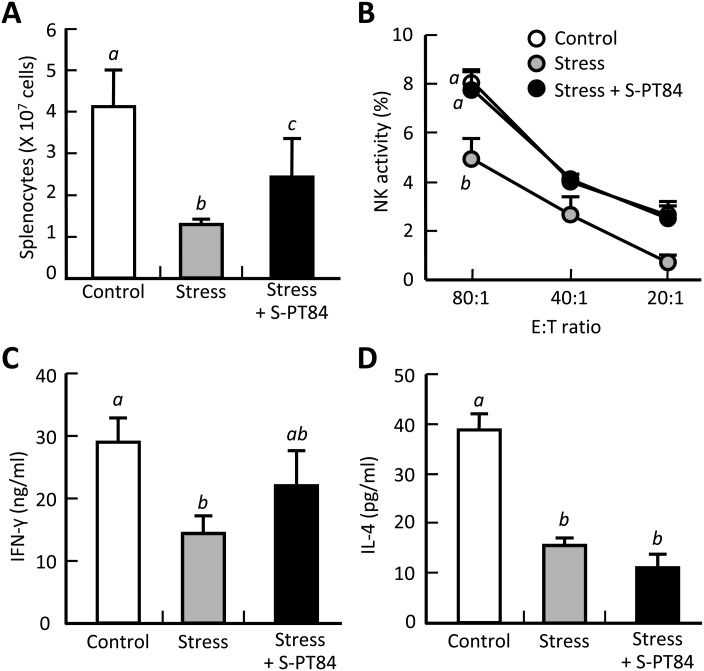 Effect of oral administration of the  L. pentosus  strain S-PT84 on stress-induced immune compromisation of splenocytes. Splenocytes were collected from mice that were fed an AIN-93 M diet with or without S-PT84 for 1 week and then restrained. The number of splenocytes (A), splenic NK activity against target YAC-1 cells (effector:target ratio = 80:1, 40:1, and 20:1) (B), and IFN-γ (C) and IL-4 (D) production levels in splenocytes cultured with Con A (2.5 µg/ml) for 24 hr were measured as described in MATERIALS AND METHODS. Data are presented as the mean ± SE of five mice. Different letters ( a ,  b  and  c ) indicate significant differences between groups (p