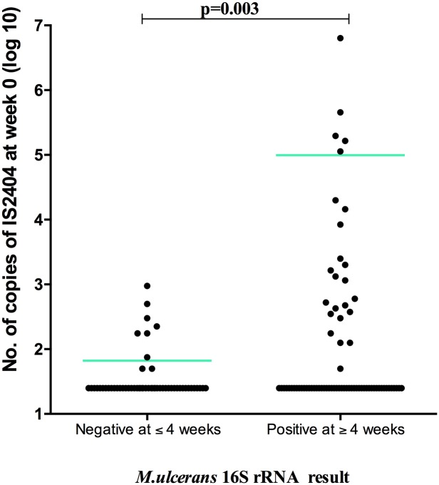 Comparison of baseline M . ulcerans IS 2404 in Buruli ulcer patients with a positive or negative 16S rRNA result at week 4.