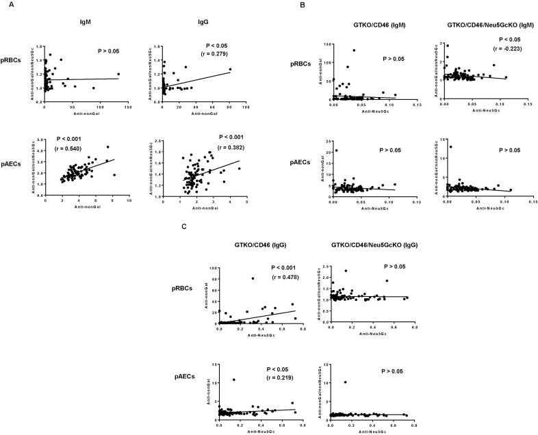 [A] Correlation between anti-nonGal and anti-nonGal/nonNeu 5 Gc IgM and IgG antibody levels. When pRBCs were the target cells, there was no correlation between anti-nonGal IgM and anti-nonGal/nonNeu5Gc IgM (P > 0.05). There was significant positive correlation between anti-nonGal IgG and anti-nonGal/nonNeu5Gc IgG (P