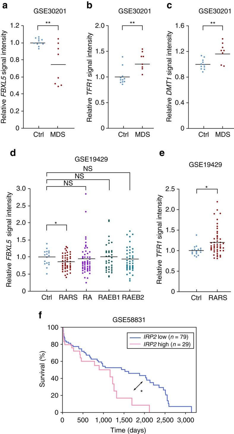 Downregulation of FBXL5 expression is associated with human hematopoietic failure. ( a – c ) Microarray analysis of FBXL5 ( a ), TFR1 ( b ) and DMT1 ( c ) expression in Lin – CD34 + CD38 – CD90 + CD45RA – cells from healthy control (Ctrl) subjects ( n =11) or from MDS patients without deletion of chromosome 5q ( n =8). ( d , e ) Microarray analysis of FBXL5 ( d ) and TFR1 ( e ) expression in CD34 + BM mononuclear cells from healthy control subjects ( n =17) or from patients with refractory anaemia with ringed sideroblasts (RARS, n =48), refractory anaemia (RA, n =55), refractory anaemia with excess blasts 1 (RAEB1, n =37), or refractory anaemia with excess blasts 2 (RAEB2, n =43). Each point represents an individual donor, and horizontal lines indicate the mean. ( f ) Survival of MDS patients without deletion of chromosome 5q and with a high ( n =29) or low ( n =79) level of IRP2 expression in CD34 + hematopoietic progenitor cells. * P