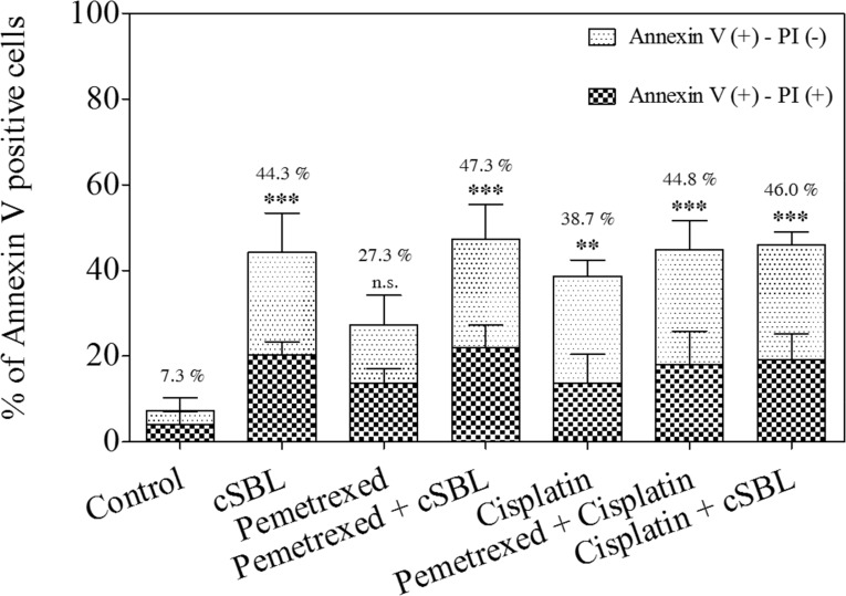 Pemetrexed, cisplatin, and cSBL, either alone or in combination, induced apoptosis in H28 cells Cells were treated with pemetrexed (20 μM), cisplatin (40 μM), or cSBL (1 μM) for 72 h. The y-axis indicates the percentage of annexin V-positive cells. The percentage of PI-positive and negative cells is indicated by the different column patterns. The statistical significance of the percentage of annexin V-positive cells compared to the control is shown. ** p