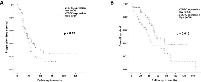 Progression-free and overall survival according to the expression level of VEGF-C By dividing the overall patient cohort into two groups according to the median VEGF-C expression by Western Blot, two groups with low (n=50) and high (n=50) VEGF-C expression were generated. (A) Progression-free survival shows no prognostic differences in relation to VEGF-C expression (median 23 vs 23 months; HR1.44, 95%-CI 0.89-2.31, p=0.13; Log Rank p=0.13). (B) Patients with high VEGF-C expression have a significantly shorter overall survival compared to patients with low VEGF-C expression levels with a median of 41 versus 56 months (HR 2.02, 95%-CI 1.12-3.63, p=0.019; Log Rank p=0.016).