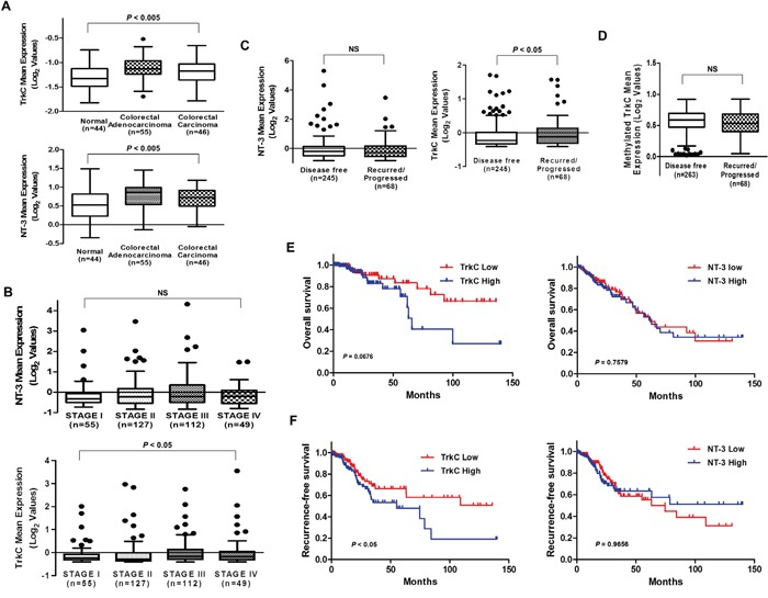 Correlation of TrkC with CRC pathogenesis and patient survival (A) Box-and-whisker (Tukey) plots of the mean expression of TrkC and NT-3 in CRC patients. TrkC and NT-3 levels were extracted from the Skrzypczak <t>microarray</t> dataset (GSE20916) and averaged in each tumor. Points below and above the whiskers are drawn as individual dots. P