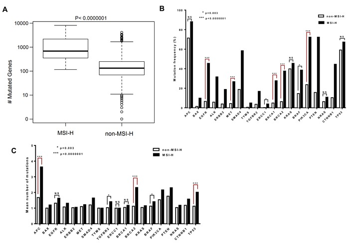 The BRCA2 gene is among the most highly mutated genes with a higher mean number of mutations per tumor in MSI-H CRCs A . Difference in number of mutated genes in CRC patients with MSI-H and non-MSI-H are plotted in box-plot (mutation counts are log10 scaled). B . Genes with different mutation frequencies among the MSI-H and non-MSI-H groups are shown with respect to matters of significance. C . The columns represent the mean of the number of mutations in the gene, across both MSI-H and non-MSI-H samples. The distribution of mutation counts between MSI-H and non-MSI-H samples were compared by Wilcoxon rank sum tests. Fisher exact test was applied to compare the categorical variables.