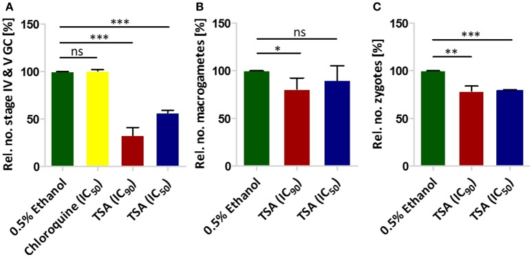 The effect of TSA on P. falciparum sexual stage development. (A) The effect of TSA on gametocyte development. TSA at IC 50 or IC 90 concentrations was added to stage II gametocyte cultures for 2 days. The numbers of stage IV and V gametocytes were determined in 1,000 erythrocytes at day 10 using Giemsa-stained blood smears. Epoxomicin (60 nM) was used as a positive control (not shown), while 0.5% vol. ethanol and chloroquine (16 nM) were used as negative controls (ethanol set to 100%). (B) The effect of TSA on macrogamete development. A mature gametocyte culture was incubated with TSA at IC 50 or IC 90 concentrations or 0.5% vol. ethanol for 1 h at 37°C. The culture was then activated with 100 μM XA and further cultured for 30 min at RT for macrogamete development. Macrogametes were detected by immunolabelling with <t>anti-Pfs25</t> and counted in triplicate in 1,000 erythrocytes. (C) Effect of TSA on zygote development. The zygote development assay was performed in the same way as the macrogamete development except for the fact that after activation the cultures were incubated for 12 h at RT. Results shown (for A–C ) are combined from three independent experiments each performed in triplicate (mean ± SD). * P