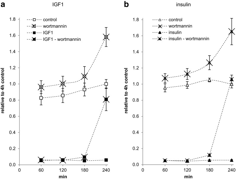 Time-dependent interference of wortmannin with apoptosis inhibition by IGF1 and insulin in Saos-2/B10 cells. Cells were cultured in serum-free media containing 1 nmol/l IGF1 ( a , n = 5) or 100 nmol/l insulin ( b , n = 3), as shown in Fig. 1 a (common stop). WT (100 nmol/l) was added 1, 2, 3, and 4 h prior to stop