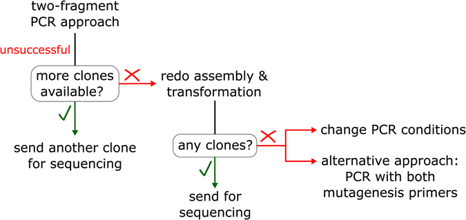 Troubleshooting scheme. For mutants which were not obtained in the first round of cloning, another clone can be sequenced, if it exists. Furthermore, the Gibson assembly reaction can be redone with the same purified DNA fragments, followed by bacterial transformation and sequencing. For missing mutants, PCR conditions can be changed or PCR containing both mutagenesis primers (one-fragment approach) can be applied.