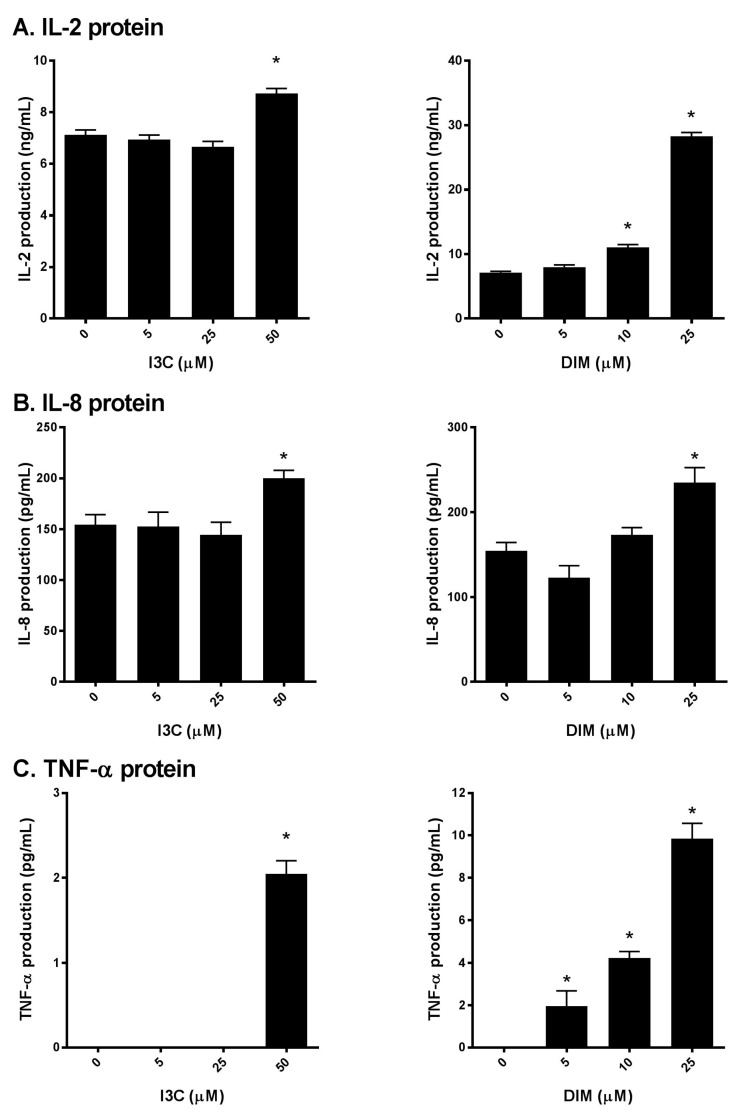 Effects of I3C, DIM on IL-2, IL-8 and TNF-α protein secretion in Jurkat cells. Jurkat cells were treated with 5, 25 or 50 μM of I3C or 5, 10 or 25 μM of DIM for 48 h and then stimulated with PMA + ionomycin for 24 h. Media were harvested and: ( A ) IL-2; ( B ) IL-8; and ( C ) TNF-α protein determined using enzyme linked immunosorbent assay (ELISA). Results expressed as mean ± SD ( n = 3) from three independent experiments. * indicates significantly different from control at p