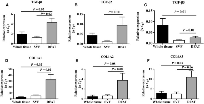 Expression levels of (A) TGF‐β1, (B) TGF‐β2, (C) TGF‐β3, (D) COL1A1, (E) COL1A2, and (F) COL6A3 in whole adipose tissue, SVF, and DFAT cells (day 12) ( n = 5 donors). Values are mean ± SEM.