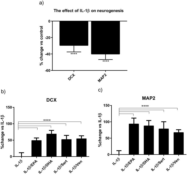 Monoaminergic antidepressants and ω-3 fatty acids reverse the IL-β-induced reduction of human hippocampal cells neurogenesis. Treatment with IL-1β decrease DCX - positive cells (immature neuronal phenotype), and MAP2 positive cells (mature neuronal phenotype) (a). Treatment with EPA, DHA, sertraline or venlafaxine reverse the IL-1β-induced decrease in DCX positive cells (b), and MAP2-positive cells (c); **** p