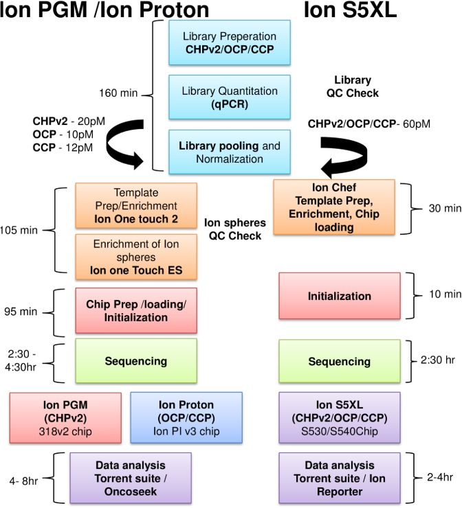 NGS workflow used for different Ion Torrent platforms in a clinical laboratory. Ion PGM, Ion Proton and Ion S5XL sequencing workflow using cancer hot spot panel v2 (CHPv2), oncomine panel (OCP) and comprehensive cancer panel (CCP) for library prep. Ion one touch 2 and Ion one touch ES was used for PGM and Proton for template preparation and enrichment of ion spheres. Enriched ion spheres were sequenced on Ion PGM and Ion Proton respectively. For Ion S5XL Ion chef was used which automates the template preparation, enrichment and chip loading. Preloaded reagent cartridge and on board Torrent suite software reduces the initialization, sequencing and data analysis time.