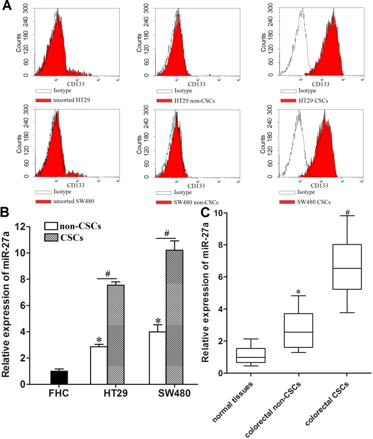 Overexpresion of miR-27a in colorectal cancer stem cells ( A ) Flow cytometry analysis was performed to detect the populations of CSCs and non-CSCs in HT29 and SW48 cell lines. ( B ) Expression of miR-27a in FHC, HT29 and SW480 CSCs and non-CSCs was measured by using qRT-PCR analysis. * P