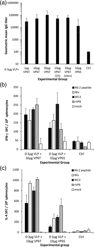 Rotavirus (RV) VP6‐specific antibodies and T cell responses. VP6‐specific immune responses were detected following immunization with 0·3 µg norovirus (NoV) GII.4 virus‐like particles (VLPs) together with VP6 nanotubes (VP6T) or nanospheres (VP6S). Control (Ctrl) mice received phosphate‐buffered saline (PBS) only. (a) Serum anti‐VP6 <t>IgG</t> of individual mice were tested in enzyme‐linked immunosorbent assay (ELISA) and the mean titration curves of each experimental group are shown. Bars represent log 10 geometric mean titres with 95% confidence intervals. For negative mice sera, an arbitrary titre of 1 : 100 (half the starting serum dilution, 1 : 200) was assigned. VP6‐specific IFN‐γ (b) and interleukin (IL)‐4 (c) production by T cells was tested stimulating the cells with VP6‐specific R6‐2 peptide, RV Wa and WC3 cell culture antigens, mock antigen or recombinant VP6 protein (rVP6). Results are expressed as the mean spot‐forming cells (SFC)/10 6 splenocytes of the duplicate wells with standard errors of the mean. The experiments were repeated two or more times with similar results.