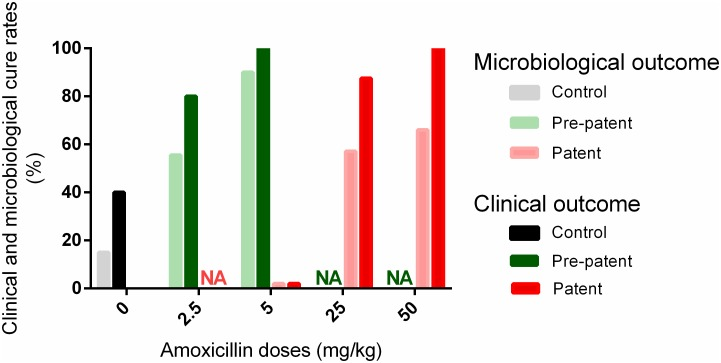 Clinical and microbiological cure rates with amoxicillin. Clinical (dark bars) and microbiological (light bars) cure rates of mice after no treatment (grey/black), early (green) or late (red) treatments with different doses of amoxicillin (2.5, 5, 25, or 50 mg/kg). Rates were calculated for all the mice of the group in control and early treatments (as all the mice in a given group were subjected to the same protocol) whereas cure rates for the late treatments were only calculated from the 60 to 70% of mice treated with amoxicillin NA: not assessed.