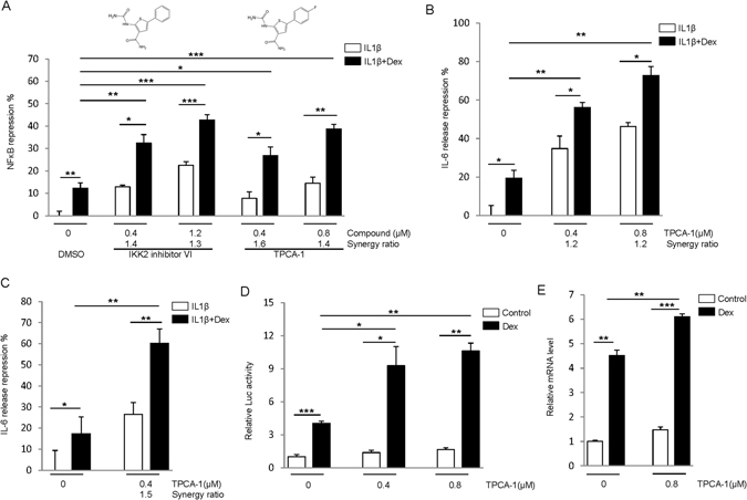 IKK2 inhibitors enhance GR activity. ( A ) IKK2 inhibitors enhance NF-κB repression by GR. The reporter cells were treated with 5 ng/mL IL-1β ± 0.5 nM Dex, and inhibitors as indicated for 18 h. Luciferase assays were performed, and NF-κB repression was calculated relative to the cells treated with IL1β. The synergy ratio is shown. ( B,C ) TPCA-1 enhances IL-6 release inhibition by GR. <t>A549</t> cells ( B ) or human airway smooth muscle cells ( C ) were treated as in ( A ), and the level of IL-6 in medium was assayed by ELISA. ( D ) IKK2 inhibitor enhances trans-activation by GR. A549 cells were transfected with <t>pGILZ-luc</t> plasmid for 48 h, and then2.5 nM Dex and TPCA-1 were added as indicated. After 18 h treatment, luciferase assays were performed. (E) A549 cells were treated with 0.8 μM TPCA-1 and 2.5 nM Dex for 18 h, and qPCR was used to measure GILZ expression. The relative mRNA levels are shown. *P