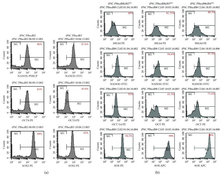 Flow cytometry analyses for pluripotency markers OCT4, SOX2, NANOG and SSEA-4 of the iPSC PBscd lines generated.