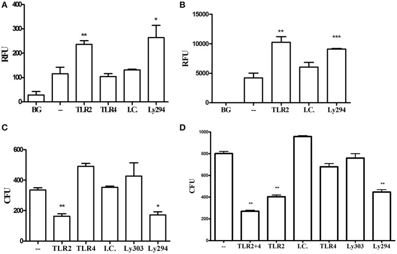 TLR2-PI3K signaling suppresses phagocytosis and enhances intracellular survival. (A) RAW264.7 or (B) PMA-differentiated THP-1 cells were treated with blocking antibodies or PI3K inhibitor and then challenged with FITC-labeled P. gingivalis at MOI 10 for 1 h. Cells were then washed, extracellular fluorescence was quenched with trypan blue, and phagocytosis was determined using a fluorescence plate reader (RFU, relative fluorescence units). (C,D) RAW 264.7 cells were treated with TLR blocking antibodies or the PI3K inhibitor prior to challenge with P. gingivalis at MOI 10 for 1 h. Cells were then washed and extracellular bacteria were killed by incubating the cells with Metronidazole and Gentamycin for 1 h. Cells were allowed to recover in fresh media for an additional hour after which they were lysed by DDW for 20 min and lysates were plated on blood agar plates in serial dilution. CFU were enumerated after 7 days of anaerobic growth. * P ≤ 0.05, ** P ≤ 0.01, *** P ≤ 0.005.